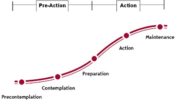 The Transtheoretical Model of Behavior Change has five stages, divided into Pre-Action and Action elements.