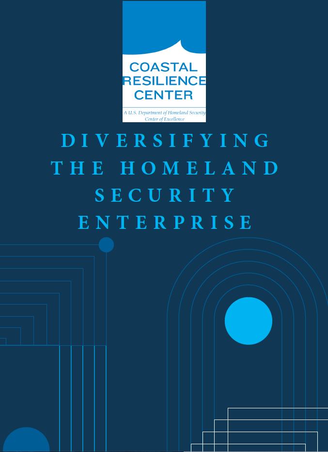 MSI report cover