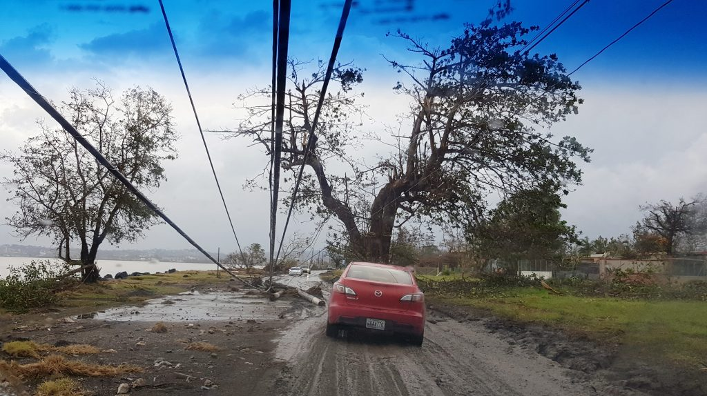 Damage along PR-102 near Guanajibo on Mayagüez coast. Photo by Ismael Pagán-Trinidad.